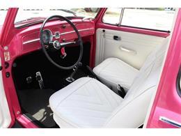 1967 Volkswagen Automobile (CC-1270340) for sale in Sarasota, Florida