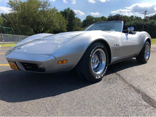 1974 Chevrolet Corvette (CC-1273723) for sale in Cadillac, Michigan