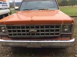 1976 Chevrolet Silverado (CC-1270004) for sale in Cadillac, Michigan