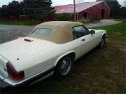1988 Jaguar XJS (CC-1274438) for sale in Yorkviller, Illinois