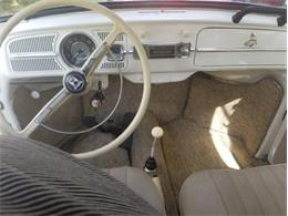 1968 Volkswagen Beetle (CC-1275321) for sale in Punta Gorda, Florida
