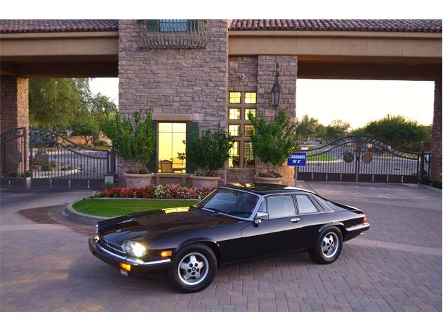 1984 Jaguar XJS (CC-1275424) for sale in Chandler, Arizona