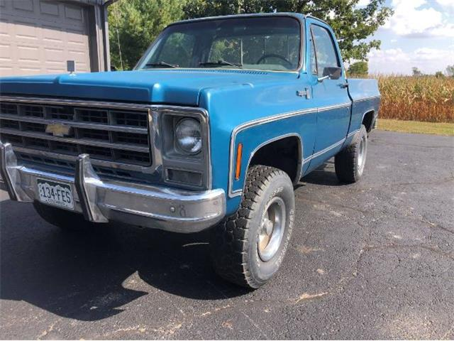 1979 Chevrolet Pickup (CC-1275661) for sale in Cadillac, Michigan
