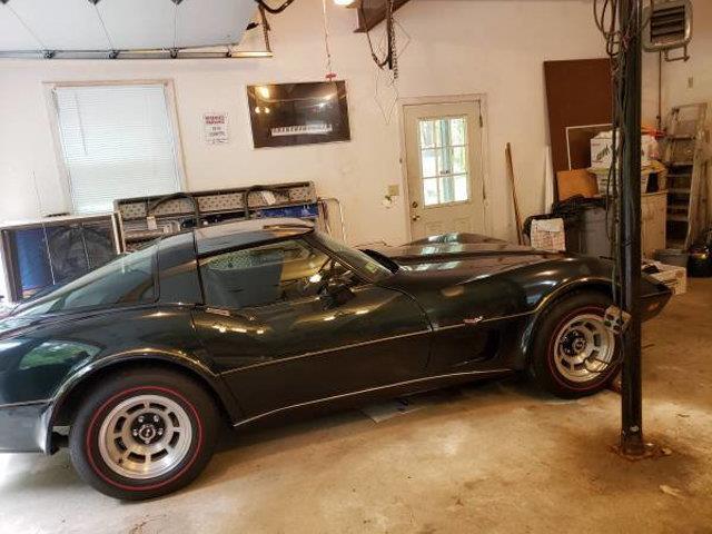 1979 Chevrolet Corvette (CC-1275903) for sale in Long Island, New York
