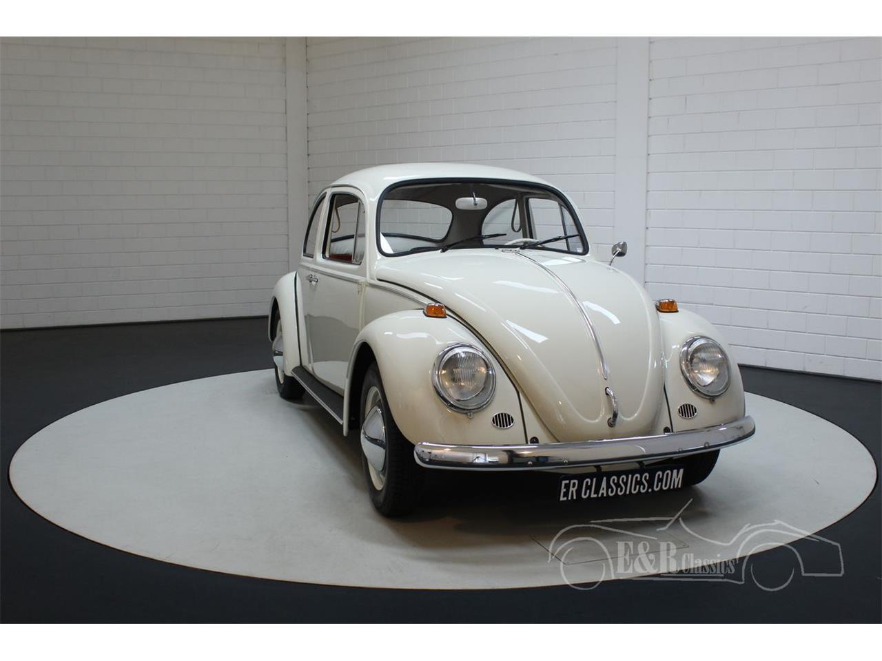 1965 Volkswagen Beetle (CC-1276151) for sale in Waalwijk, Noord-Brabant