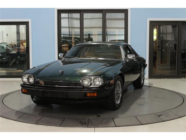1980 Jaguar XJ (CC-1292432) for sale in Palmetto, Florida