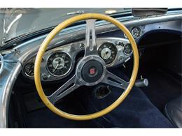 1953 Austin-Healey 100M (CC-1292502) for sale in Allentown, Pennsylvania