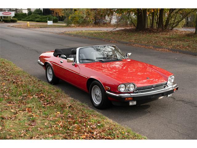 1990 Jaguar XJS (CC-1293201) for sale in Orange, Connecticut