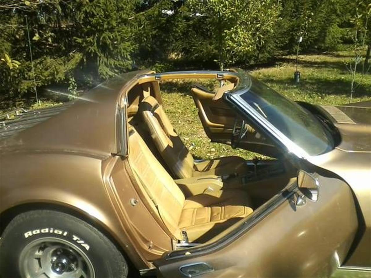 1975 Chevrolet Corvette (CC-1293402) for sale in Cadillac, Michigan