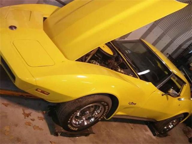 1975 Chevrolet Corvette (CC-1293766) for sale in Cadillac, Michigan