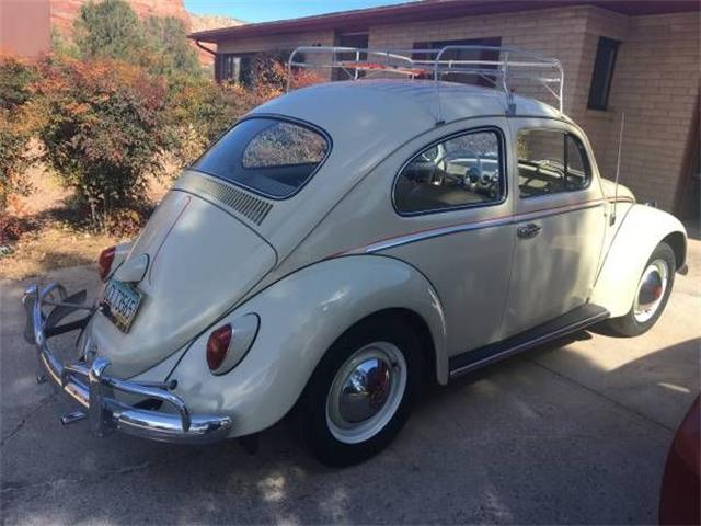 1962 Volkswagen Beetle (CC-1293777) for sale in Cadillac, Michigan