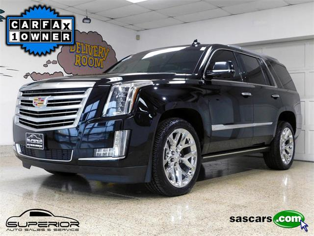 2016 Cadillac Escalade (CC-1293963) for sale in Hamburg, New York