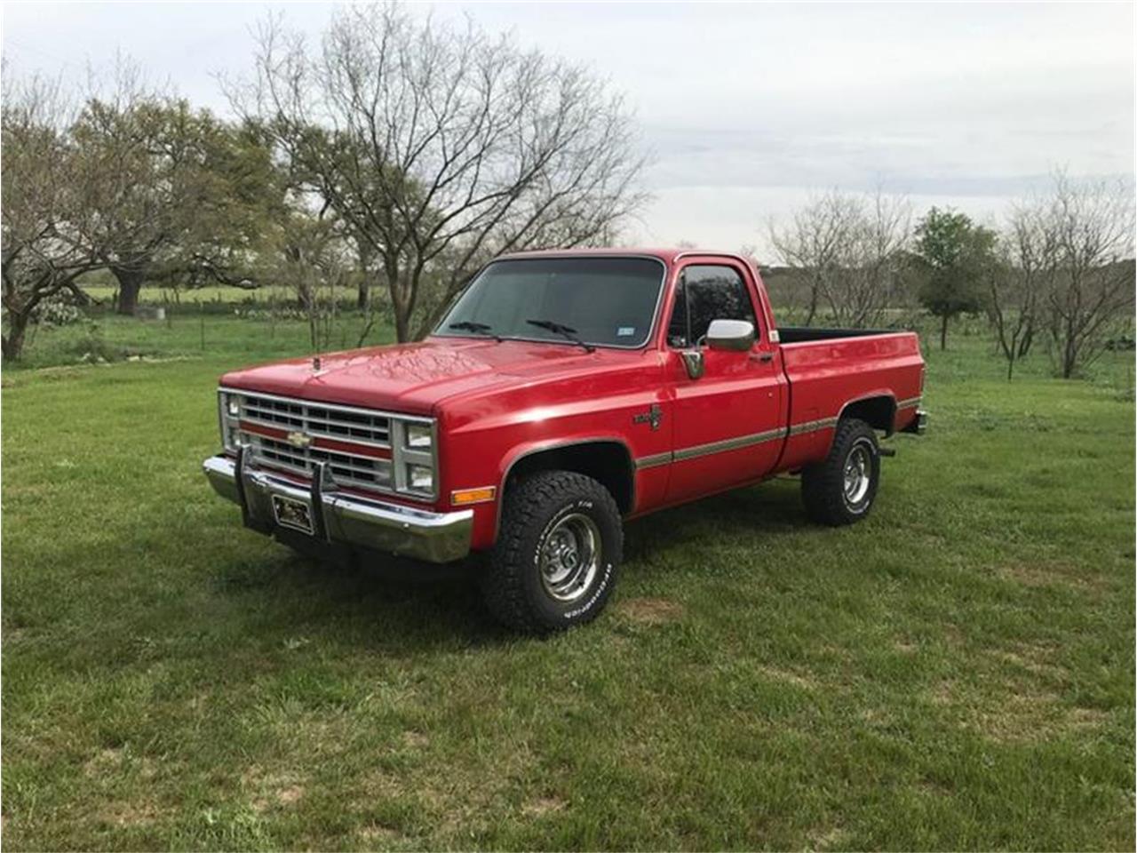 1987 Chevrolet C10 (CC-1294102) for sale in Fredericksburg, Texas