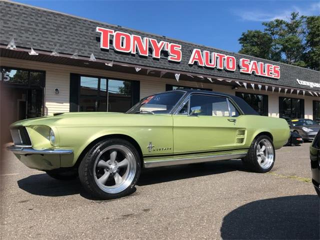 1967 Ford Mustang (CC-1294453) for sale in Waterbury, Connecticut