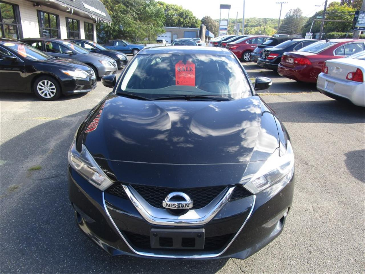 2017 Nissan Maxima (CC-1294508) for sale in Waterbury, Connecticut