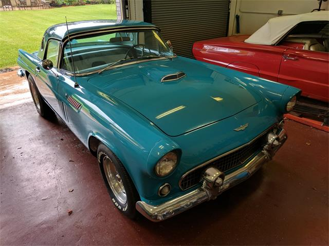 1956 Ford Thunderbird (CC-1294537) for sale in Sunrise, Florida