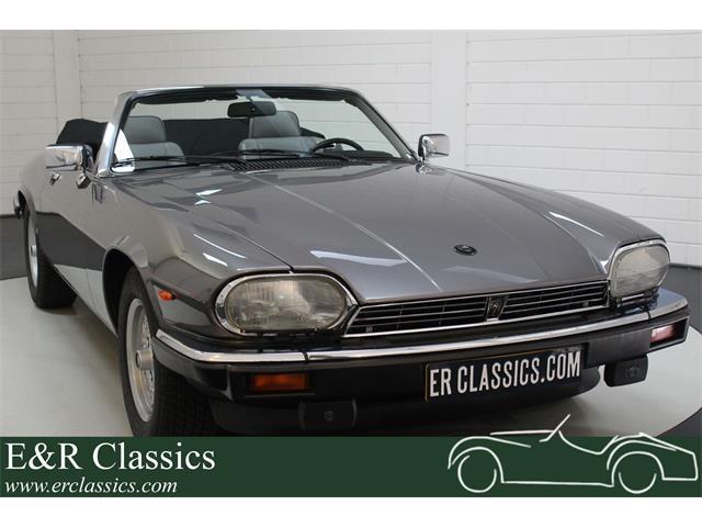 1991 Jaguar XJS (CC-1294798) for sale in Waalwijk, Noord-Brabant