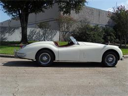 1955 Jaguar XK140 (CC-1294840) for sale in HOUSTON, Texas
