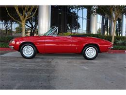 1967 Alfa Romeo Duetto (CC-1295177) for sale in Houston, Texas