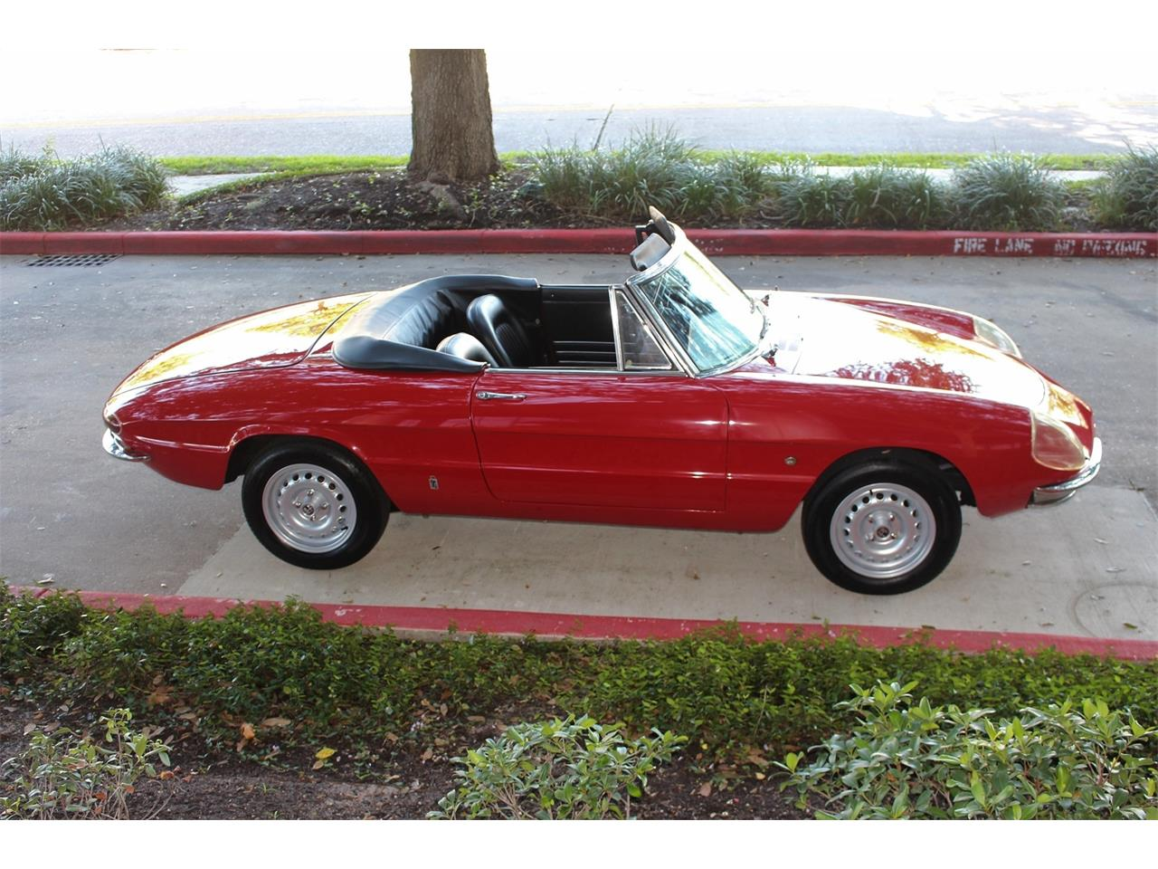 1967 Alfa Romeo Duetto (CC-1295177) for sale in Houston, Texas