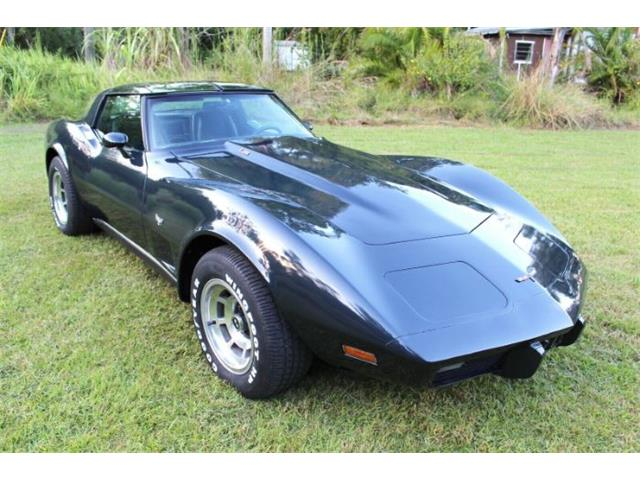 1979 Chevrolet Corvette (CC-1295377) for sale in Cadillac, Michigan