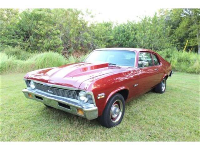1974 Chevrolet Nova (CC-1295380) for sale in Cadillac, Michigan