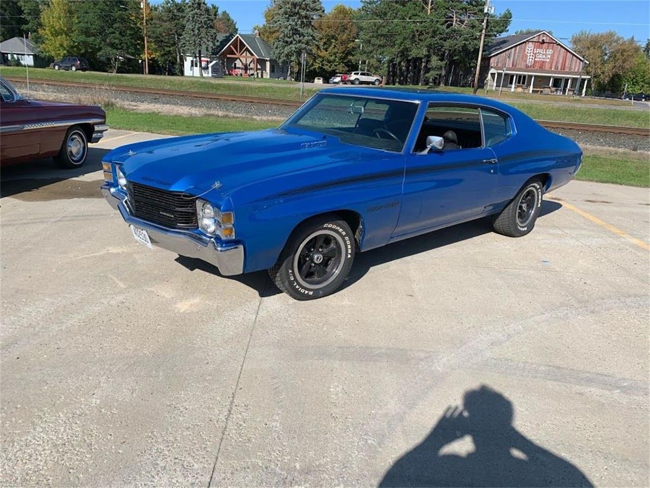 1971 Chevrolet Custom (CC-1295683) for sale in Annandale, Minnesota