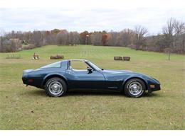 1981 Chevrolet Corvette (CC-1295899) for sale in Lapeer, Michigan