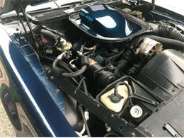1974 Pontiac Firebird Trans Am (CC-1296093) for sale in Cadillac, Michigan