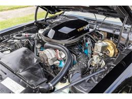 1979 Pontiac Firebird Trans Am (CC-1296105) for sale in Cadillac, Michigan