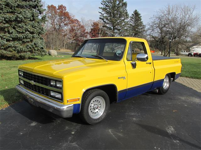 1982 Chevrolet C10 (CC-1296404) for sale in Goodrich, Michigan