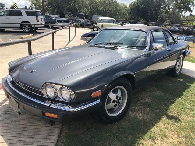 1986 Jaguar XJ (CC-1296503) for sale in Dallas, Texas