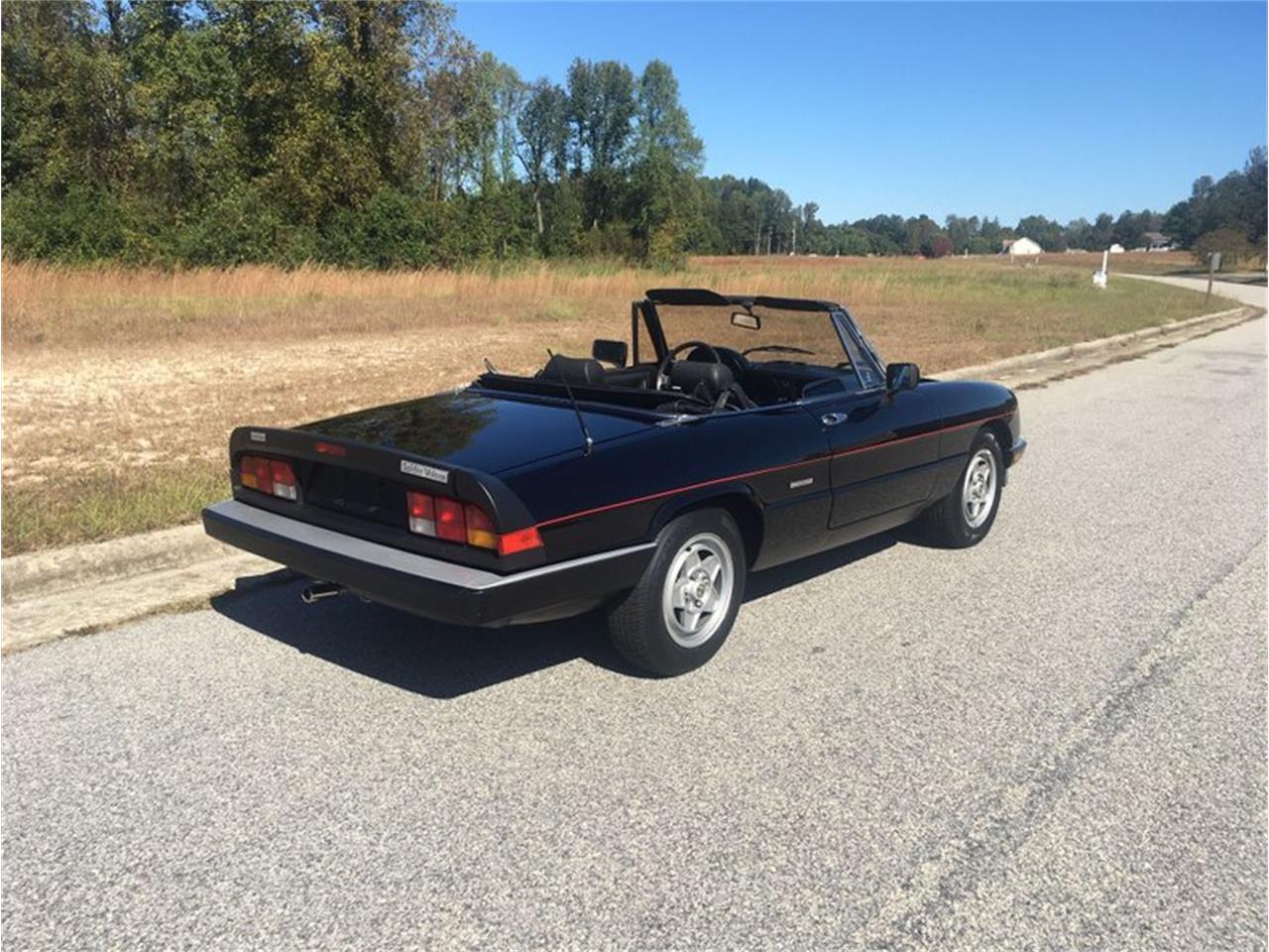 1987 Alfa Romeo Spider Veloce (CC-1297273) for sale in Punta Gorda, Florida