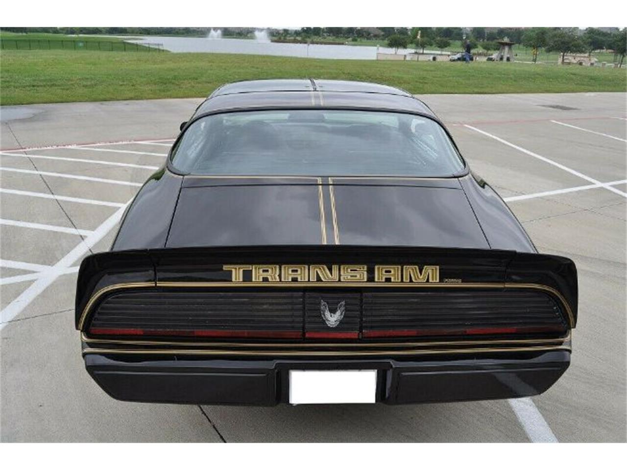 1979 Pontiac Firebird Trans Am (CC-1297420) for sale in Cadillac, Michigan
