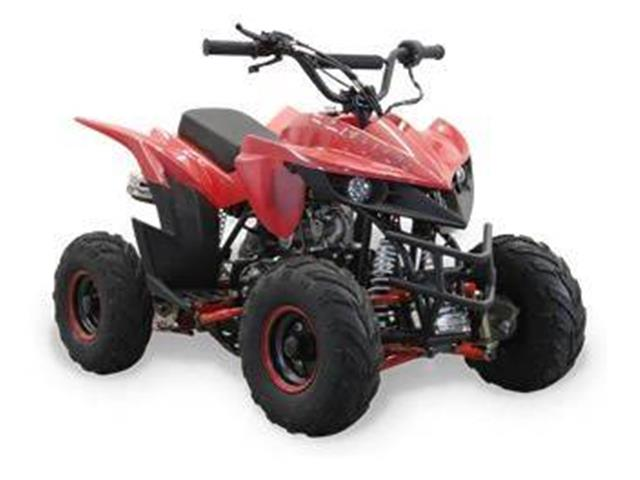 2019 Miscellaneous ATV (CC-1297881) for sale in Vestal, New York