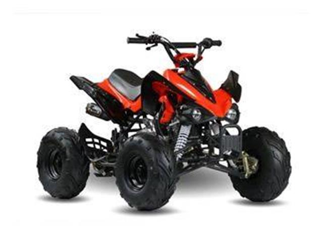 2019 Miscellaneous ATV (CC-1297886) for sale in Vestal, New York