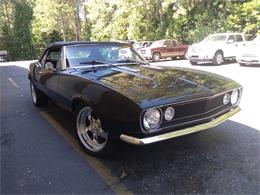 1967 Chevrolet Camaro (CC-1298504) for sale in Grass Valley, California