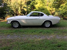 1966 Volvo P1800S (CC-1299160) for sale in Port Republic, Maryland