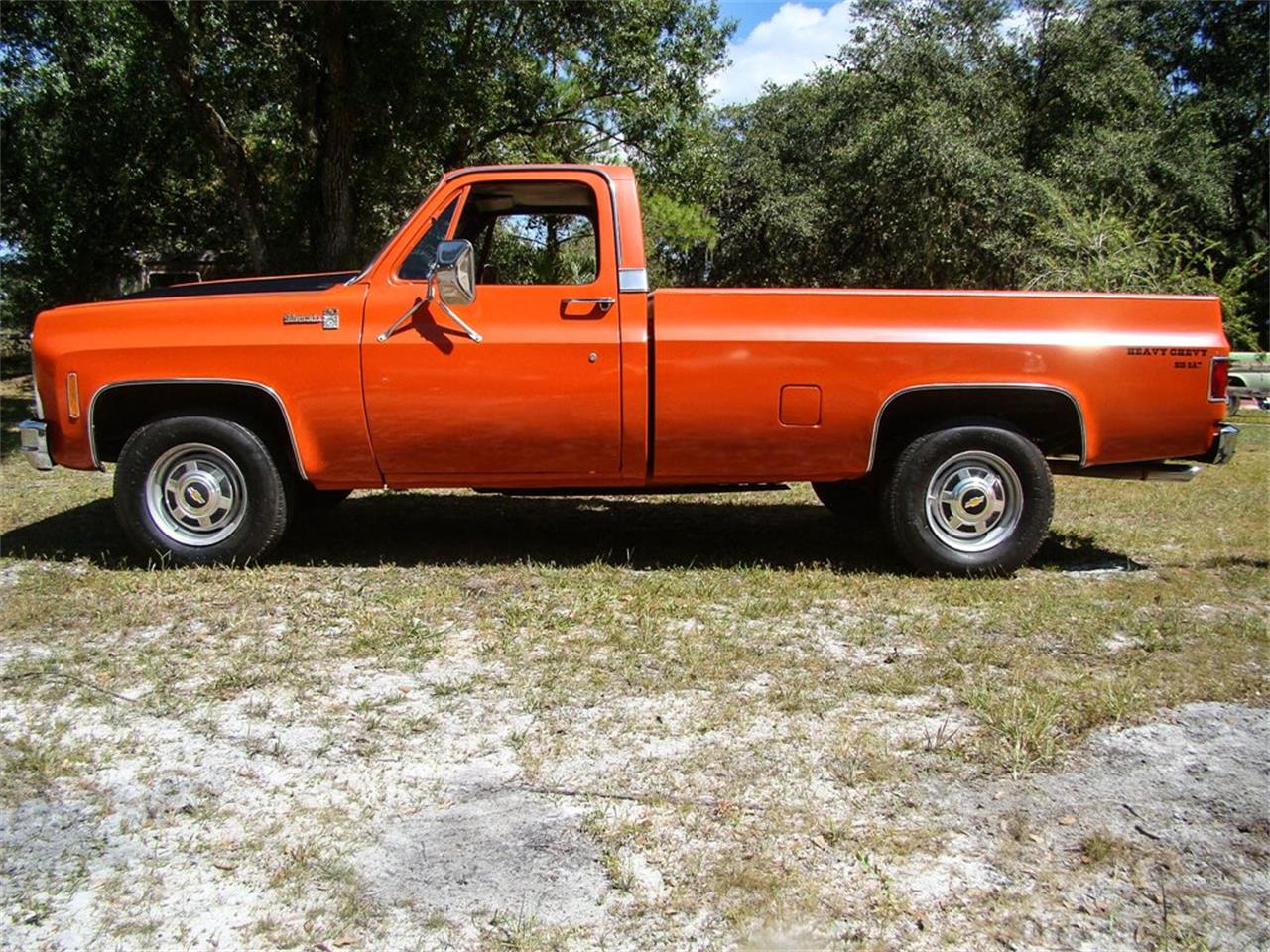 1979 Chevrolet C20 (CC-1299241) for sale in Palmetto, Florida