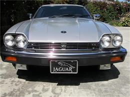 1985 Jaguar XJS (CC-137956) for sale in Fremont, California
