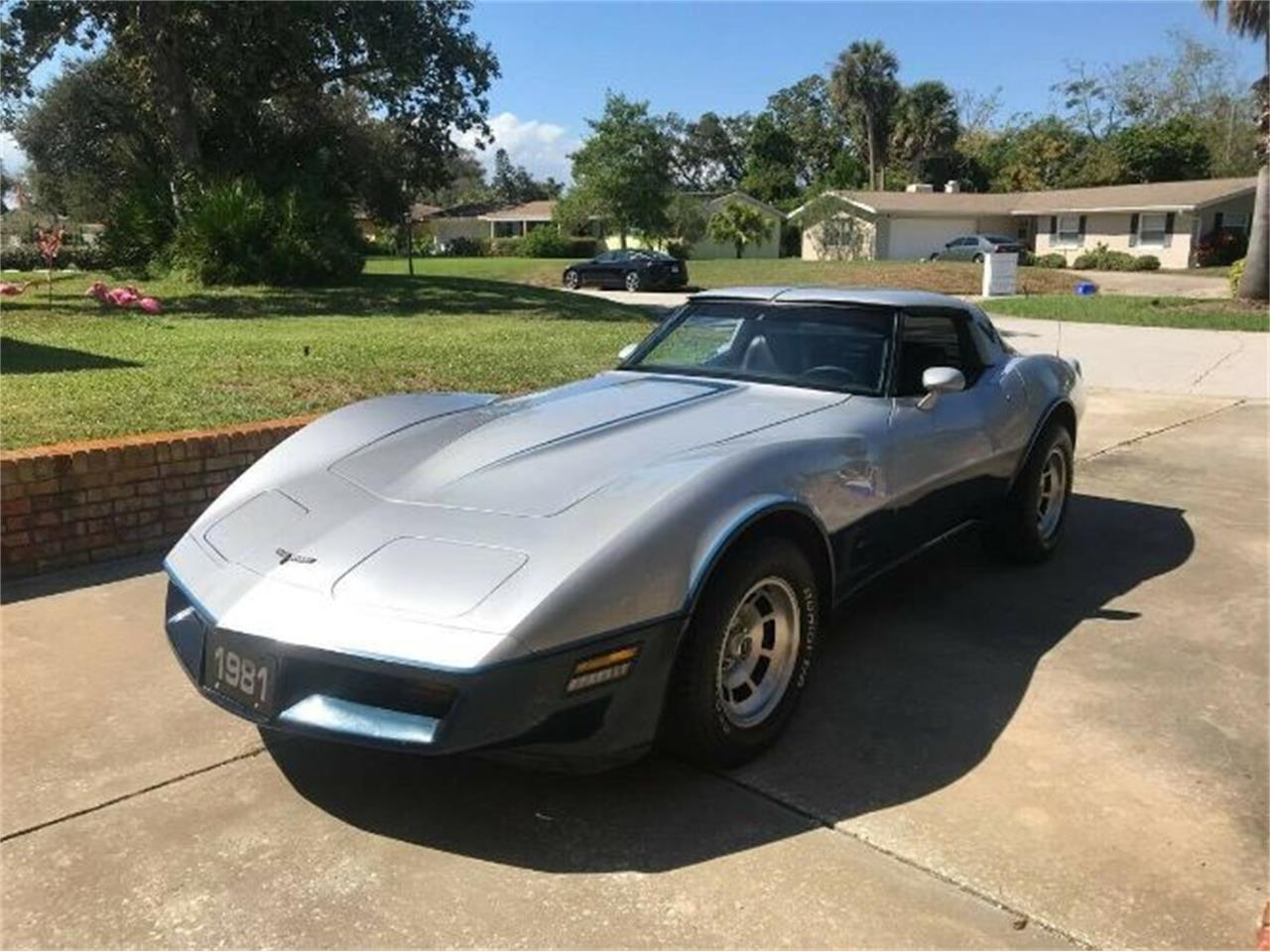 1981 Chevrolet Corvette (CC-1301362) for sale in Cadillac, Michigan