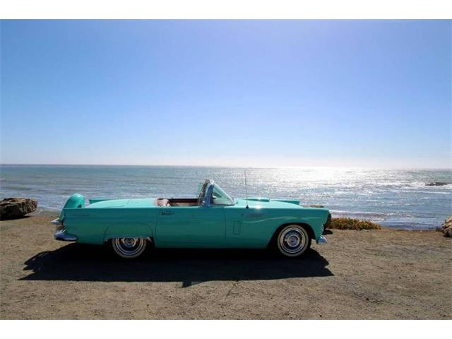1956 Ford Thunderbird (CC-1301610) for sale in Cadillac, Michigan