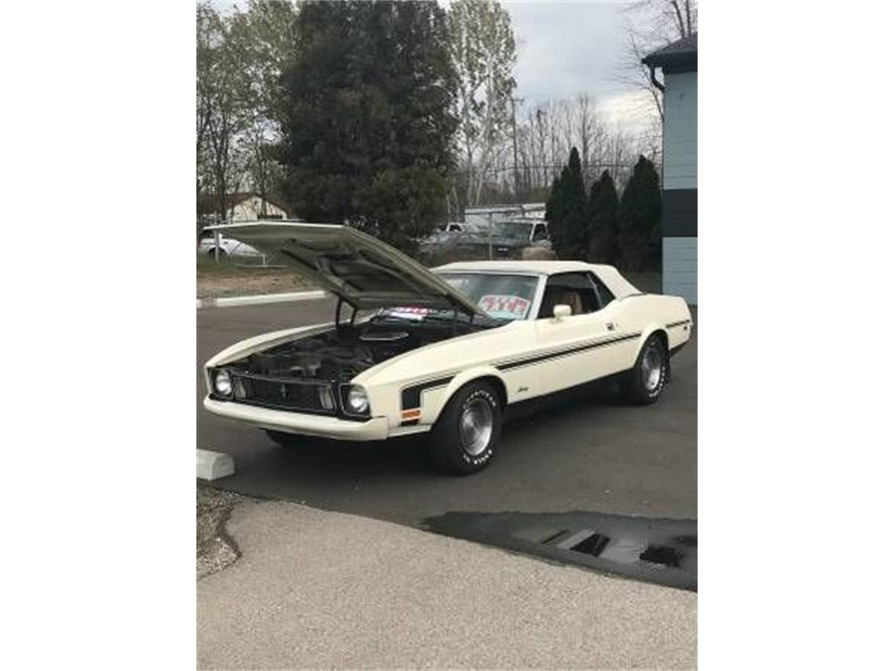1973 Ford Mustang (CC-1301627) for sale in Cadillac, Michigan