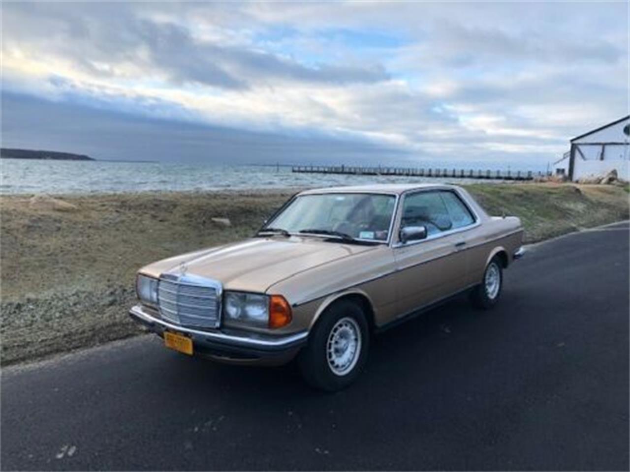 1980 Mercedes-Benz 280CE (CC-1301641) for sale in Cadillac, Michigan