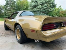 1978 Pontiac Firebird Trans Am (CC-1301649) for sale in Cadillac, Michigan