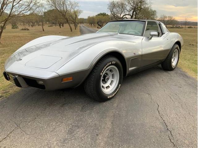 1978 Chevrolet Corvette (CC-1301817) for sale in Fredericksburg, Texas