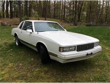 1988 Chevrolet Monte Carlo (CC-1301858) for sale in Cadillac, Michigan