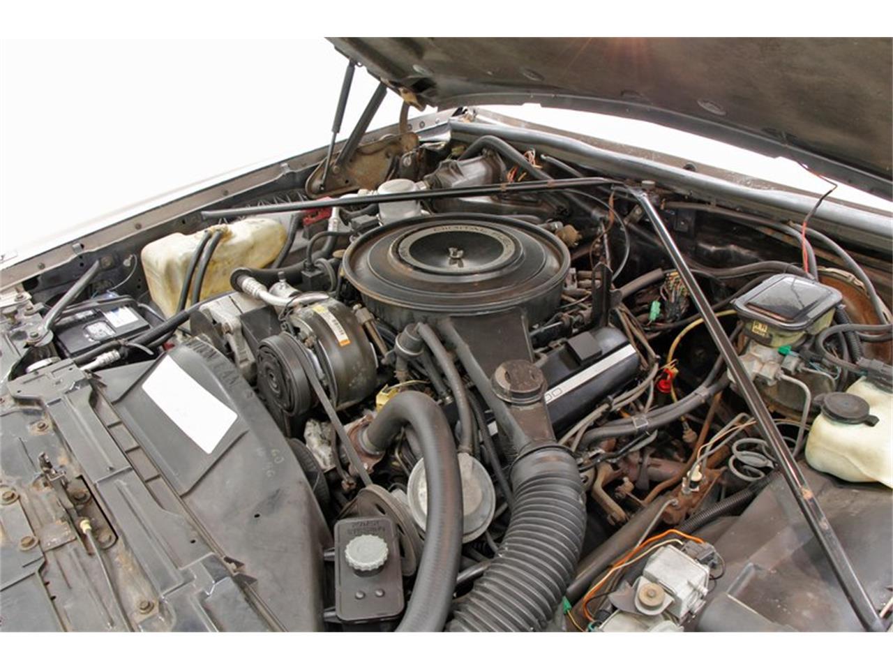 1984 Cadillac Eldorado (CC-1302517) for sale in Morgantown, Pennsylvania