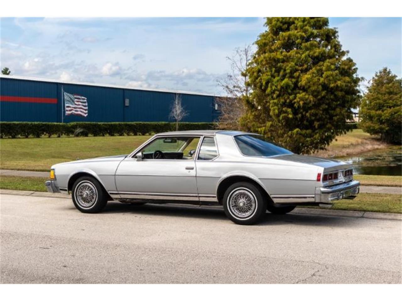 1979 Chevrolet Caprice (CC-1302707) for sale in Cadillac, Michigan