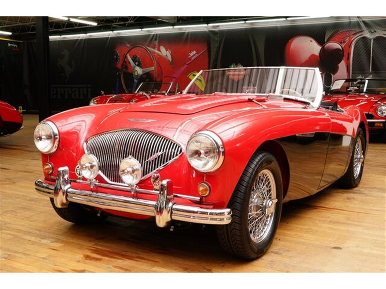 1954 Austin-Healey Roadster (CC-1302776) for sale in Hickory, North Carolina
